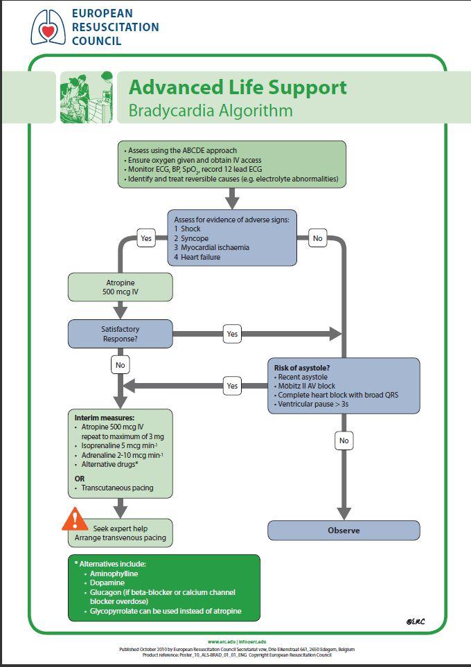 Bradycardie schema